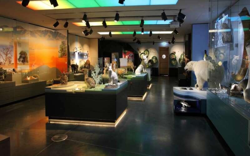 Raum der Nationalgalerie
